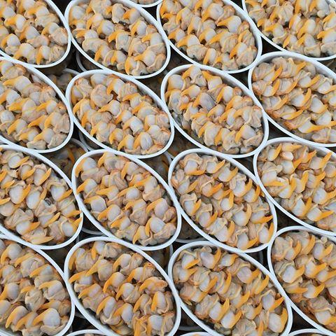 conservas-de-marisco-pueden-llegar-a-ser-una-autentica-delicatessen-3