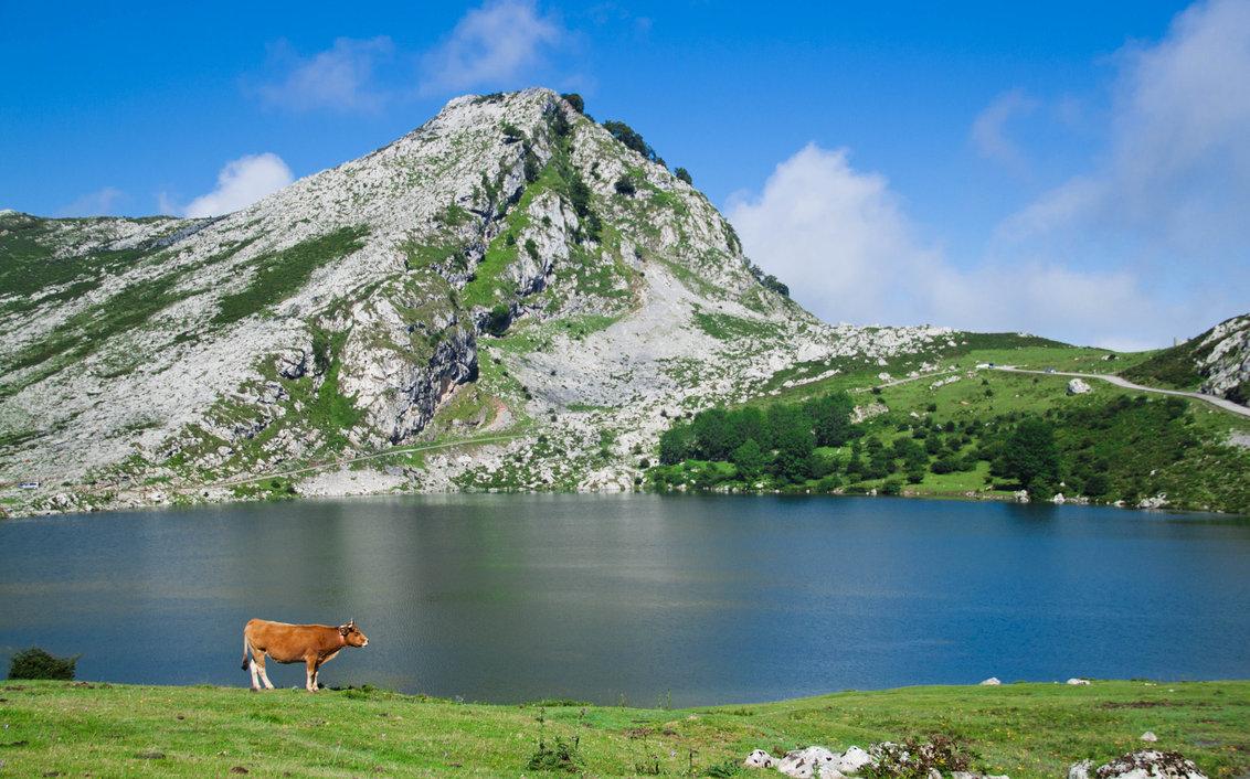 lagos_de_covadonga_by_jonyrubio-d40zsom