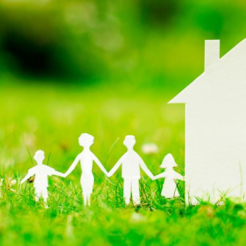 celulosa ecologica para hogar
